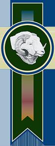 Exmoor Horn Wool